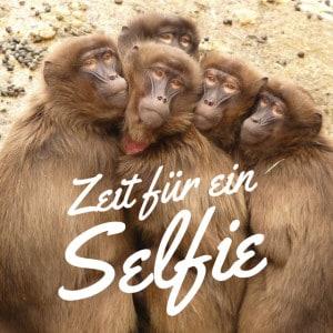 Zeit für ein Selfie